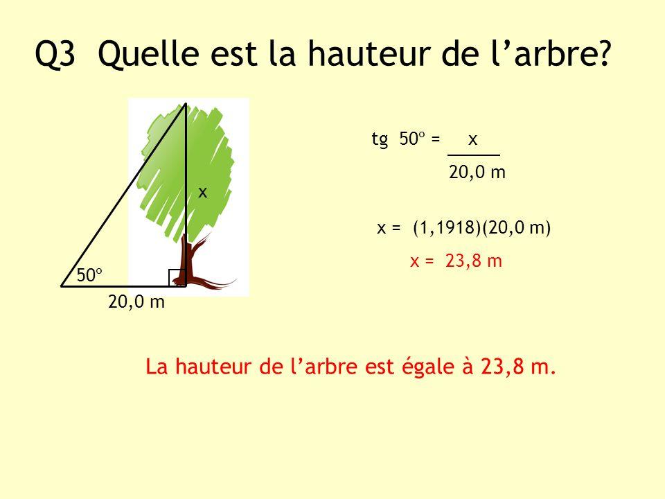 Q3 Quelle est la hauteur de larbre? x 20,0 m tg 50º = x 20,0 m x = (1,1918)(20,0 m) x = 23,8 m 50º La hauteur de larbre est égale à 23,8 m.