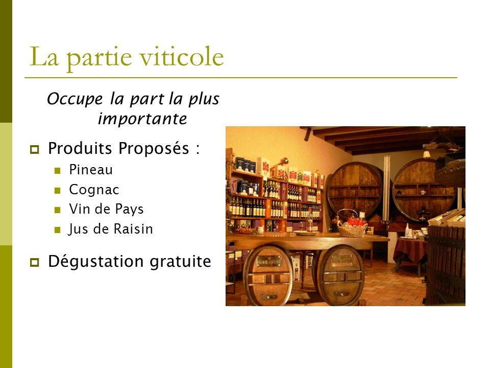 La partie viticole Occupe la part la plus importante Produits Proposés : Pineau Cognac Vin de Pays Jus de Raisin Dégustation gratuite