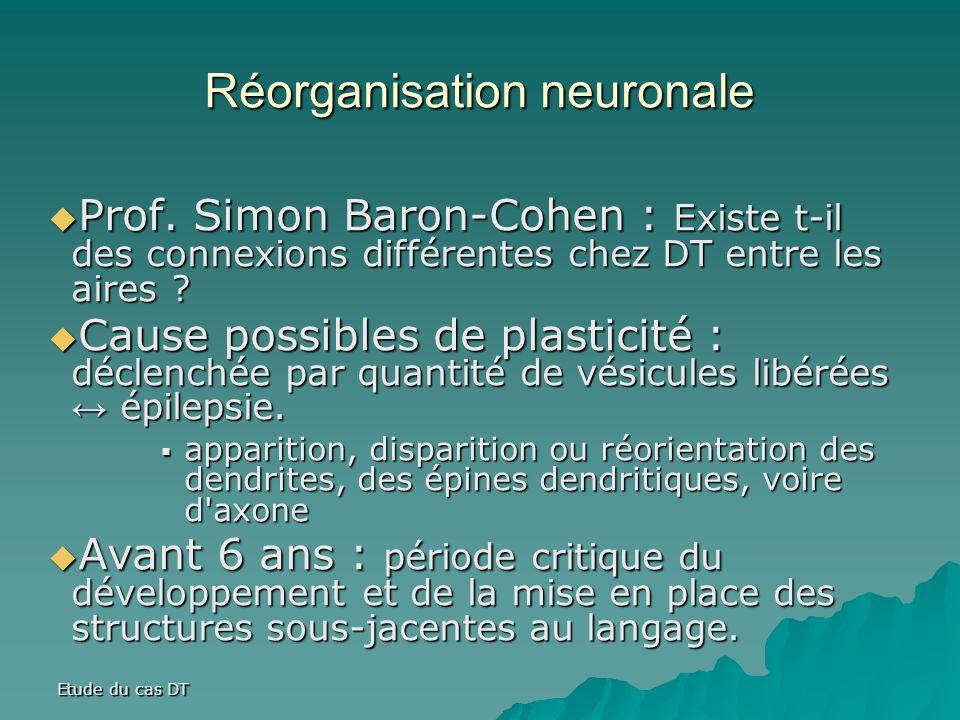 Etude du cas DT Réorganisation neuronale Prof.