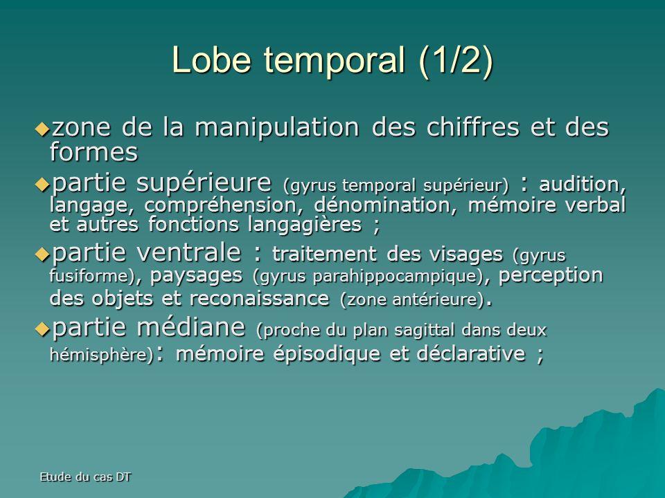 Etude du cas DT Lobe temporal (1/2) zone de la manipulation des chiffres et des formes zone de la manipulation des chiffres et des formes partie supérieure (gyrus temporal supérieur) : audition, langage, compréhension, dénomination, mémoire verbal et autres fonctions langagières ; partie supérieure (gyrus temporal supérieur) : audition, langage, compréhension, dénomination, mémoire verbal et autres fonctions langagières ; partie ventrale : traitement des visages (gyrus fusiforme), paysages (gyrus parahippocampique), perception des objets et reconaissance (zone antérieure).