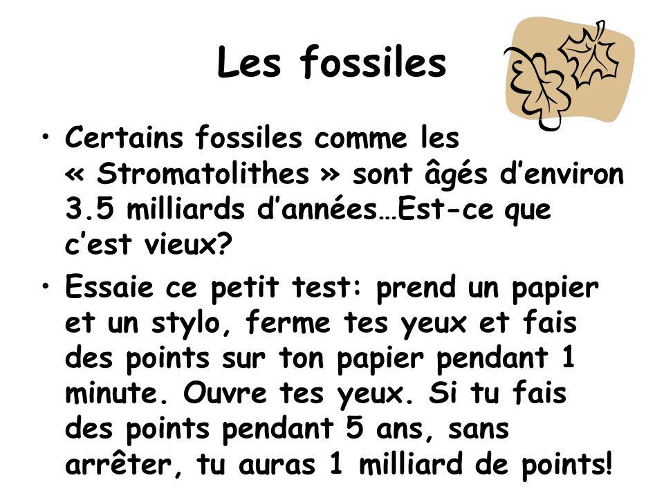Les fossiles Certains fossiles comme les « Stromatolithes » sont âgés denviron 3.5 milliards dannées…Est-ce que cest vieux? Essaie ce petit test: pren