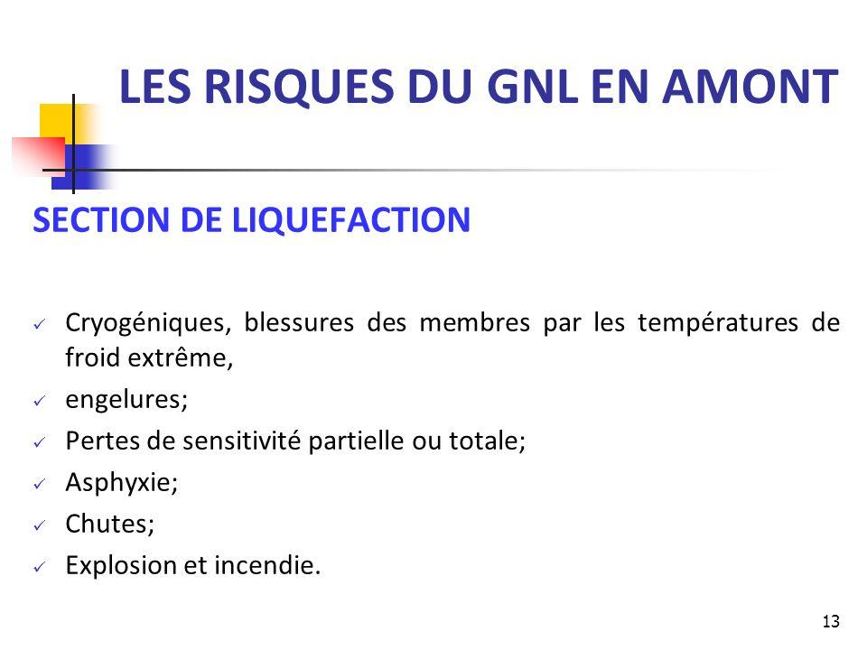 LES RISQUES DU GNL EN AMONT SECTION DE LIQUEFACTION Cryogéniques, blessures des membres par les températures de froid extrême, engelures; Pertes de se