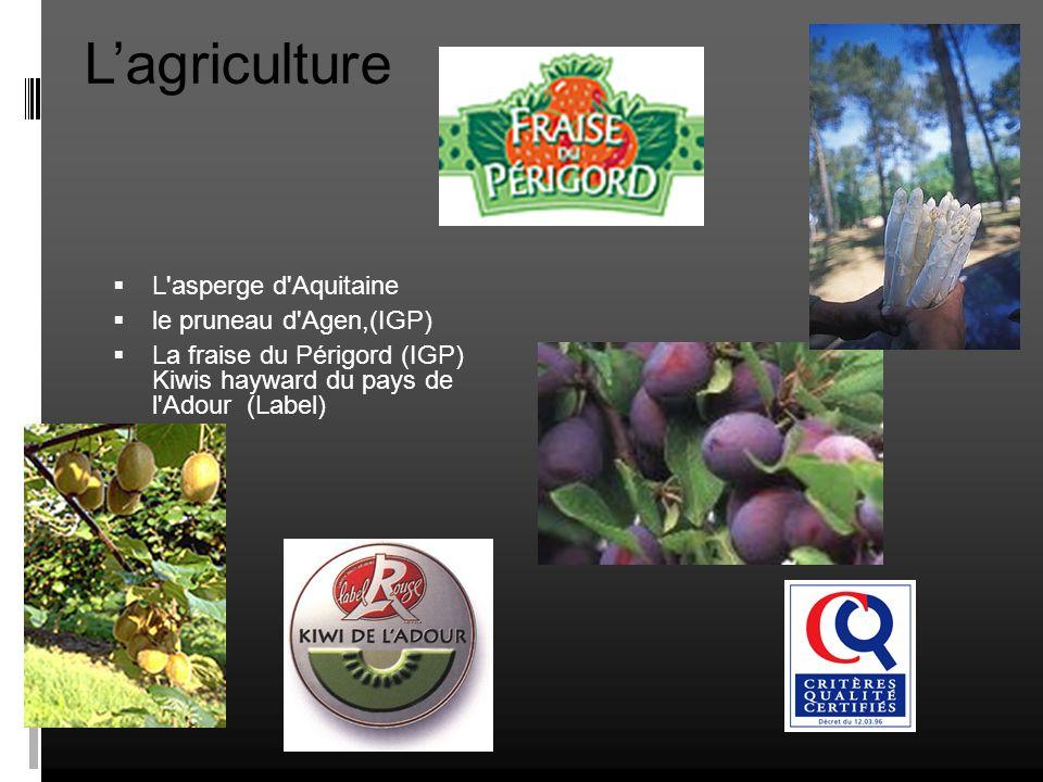 Lagriculture L'asperge d'Aquitaine le pruneau d'Agen,(IGP) La fraise du Périgord (IGP) Kiwis hayward du pays de l'Adour (Label)