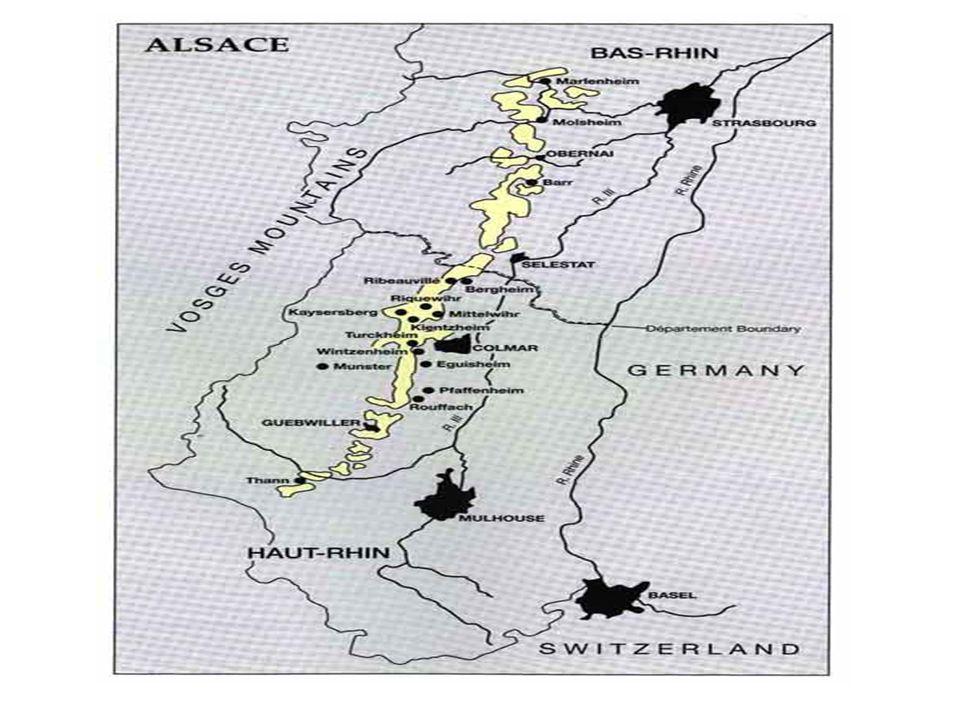 Appellations contrôlées: depuis 1962 Alsace (avec le nom du cépage) Alsace grand cru (avec nom du vignoble): il y en a 50 en tout Crémant dAlsace Vendange tardive et Sélection de grains nobles sont contrôlés par la loi depuis 1983.