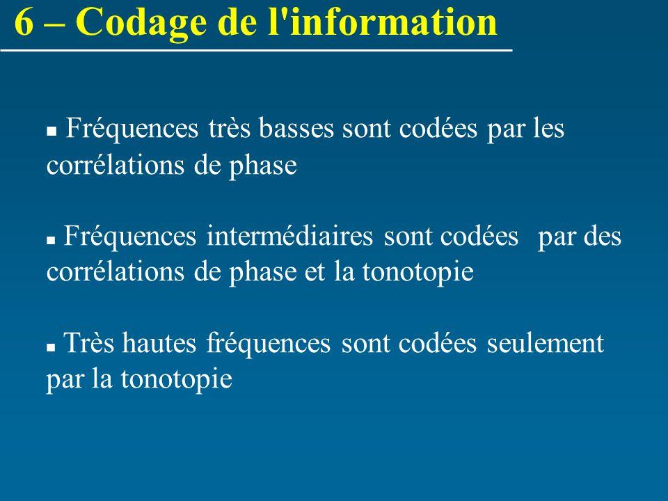 Fréquences très basses sont codées par les corrélations de phase Fréquences intermédiaires sont codées par des corrélations de phase et la tonotopie T