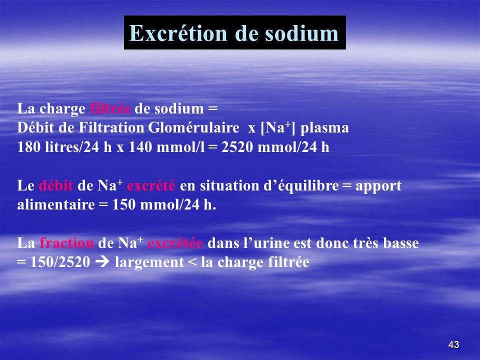 La charge filtrée de sodium = Débit de Filtration Glomérulaire x [Na + ] plasma 180 litres/24 h x 140 mmol/l = 2520 mmol/24 h Le débit de Na + excrété