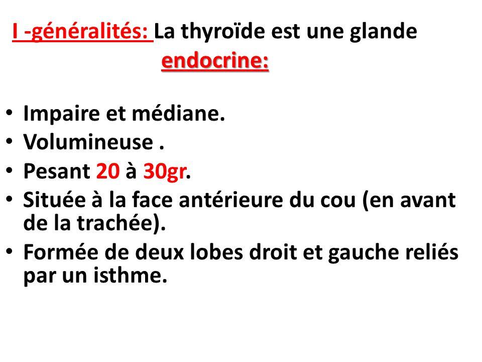 endocrine: I -généralités: La thyroïde est une glande endocrine: Impaire et médiane. Volumineuse. Pesant 20 à 30gr. Située à la face antérieure du cou