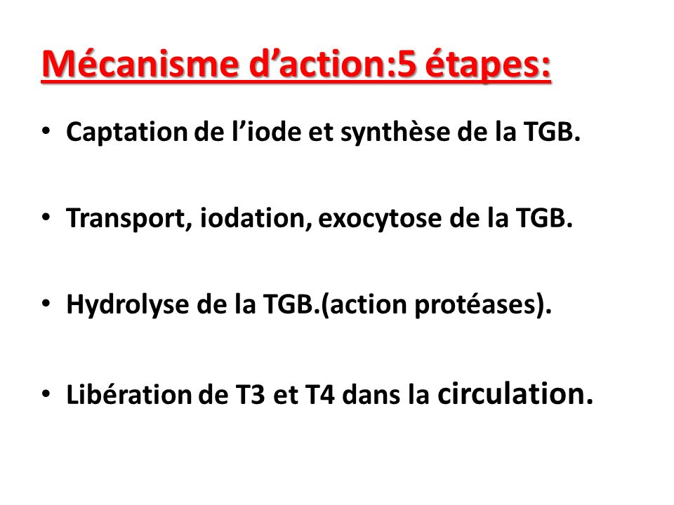Mécanisme daction:5 étapes: Captation de liode et synthèse de la TGB. Transport, iodation, exocytose de la TGB. Hydrolyse de la TGB.(action protéases)