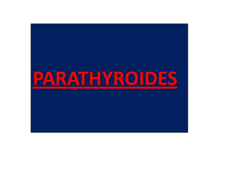 PARATHYROIDES