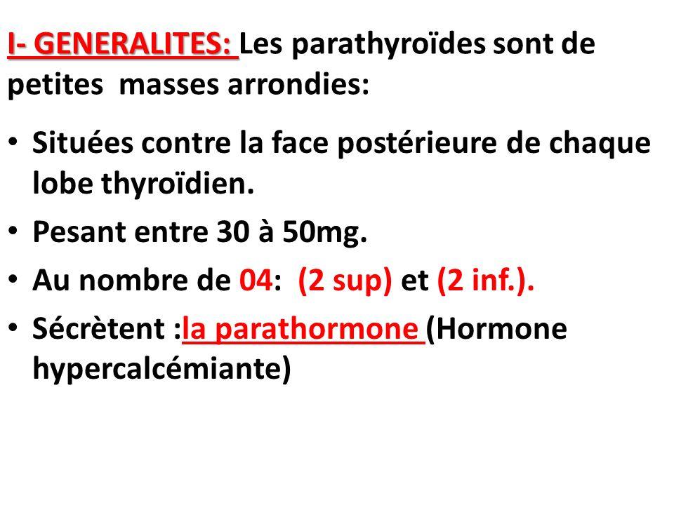 I- GENERALITES: I- GENERALITES: Les parathyroïdes sont de petites masses arrondies: Situées contre la face postérieure de chaque lobe thyroïdien. Pesa