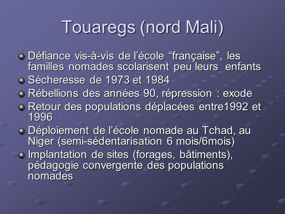 Touaregs (nord Mali) Défiance vis-à-vis de lécole française, les familles nomades scolarisent peu leurs enfants Sécheresse de 1973 et 1984 Rébellions