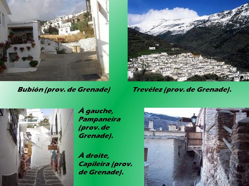 Bubión (prov. de Grenade) Trevélez (prov. de Grenade). À gauche, Pampaneira (prov. de Grenade). À droite, Capileira (prov. de Grenade).