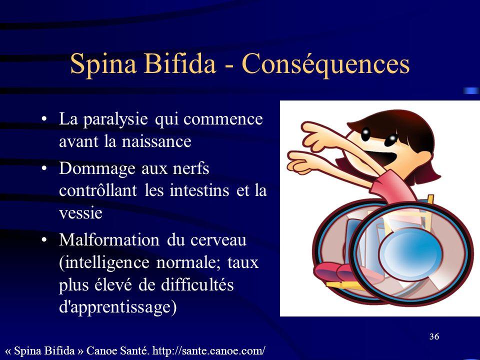 36 Spina Bifida - Conséquences La paralysie qui commence avant la naissance Dommage aux nerfs contrôllant les intestins et la vessie Malformation du c