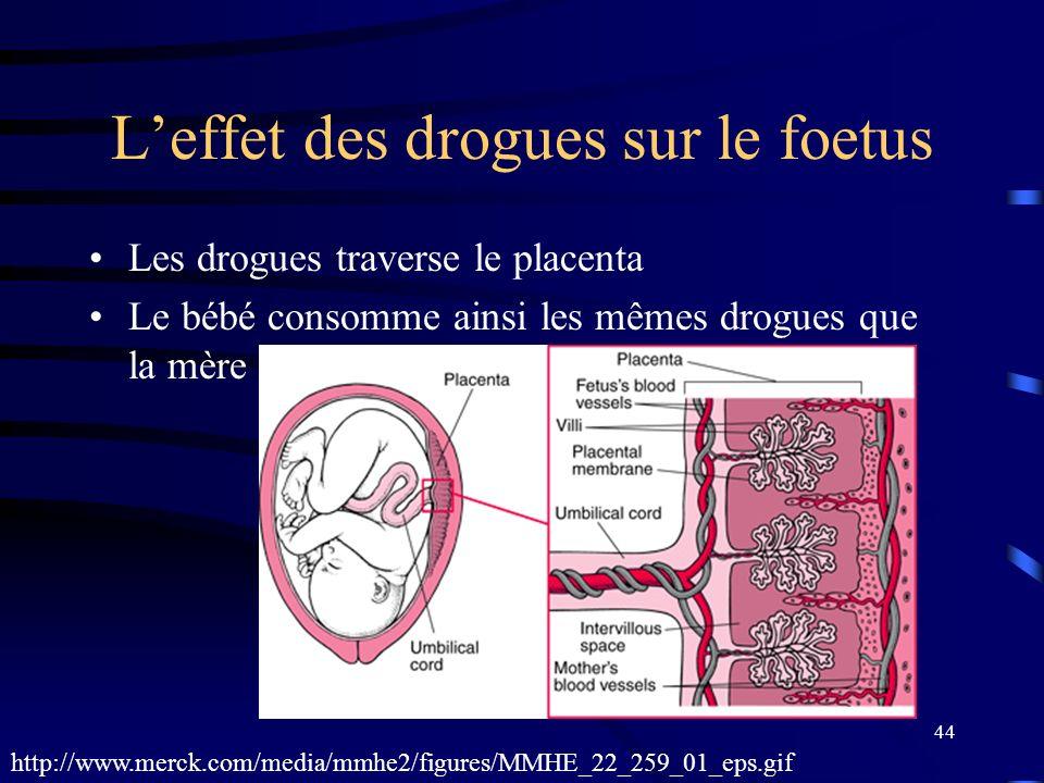 44 Leffet des drogues sur le foetus Les drogues traverse le placenta Le bébé consomme ainsi les mêmes drogues que la mère http://www.merck.com/media/m