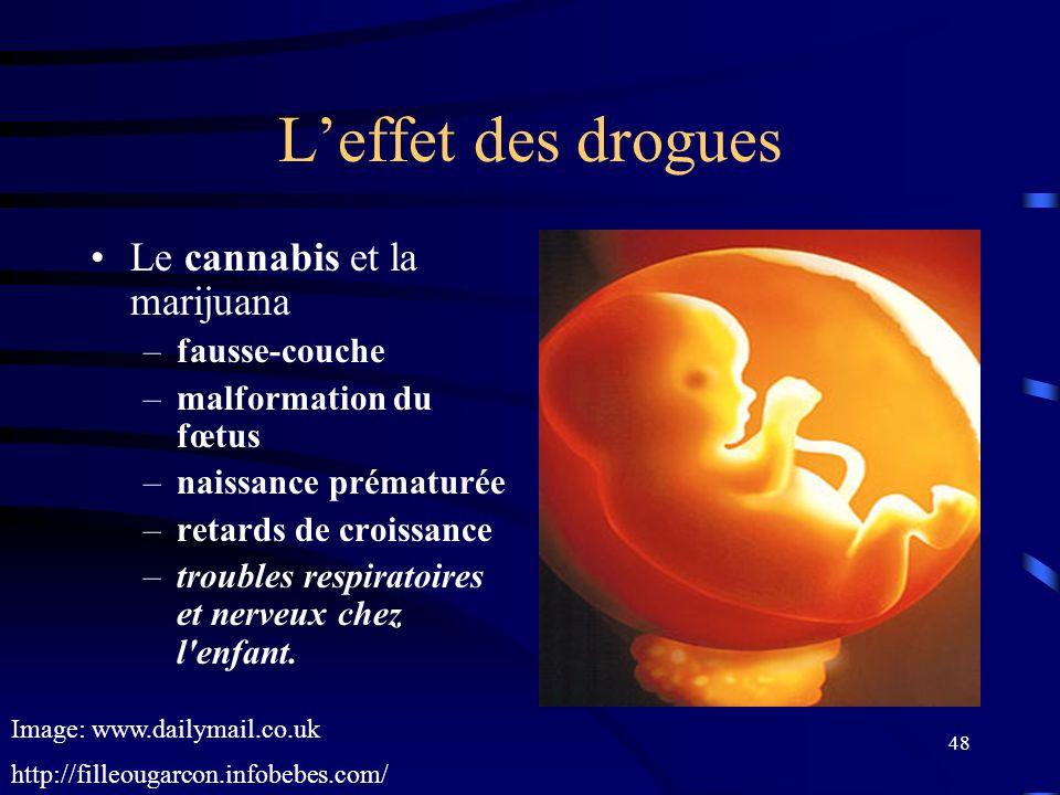 48 Leffet des drogues Le cannabis et la marijuana –fausse-couche –malformation du fœtus –naissance prématurée –retards de croissance –troubles respira