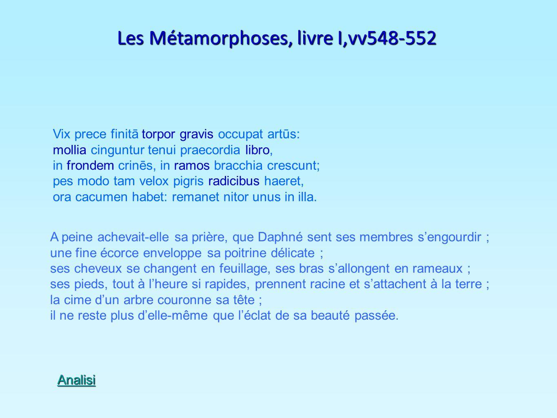 Les Métamorphoses, livre I,vv548-552 Vix prece finitā torpor gravis occupat artūs: mollia cinguntur tenui praecordia libro, in frondem crinēs, in ramo