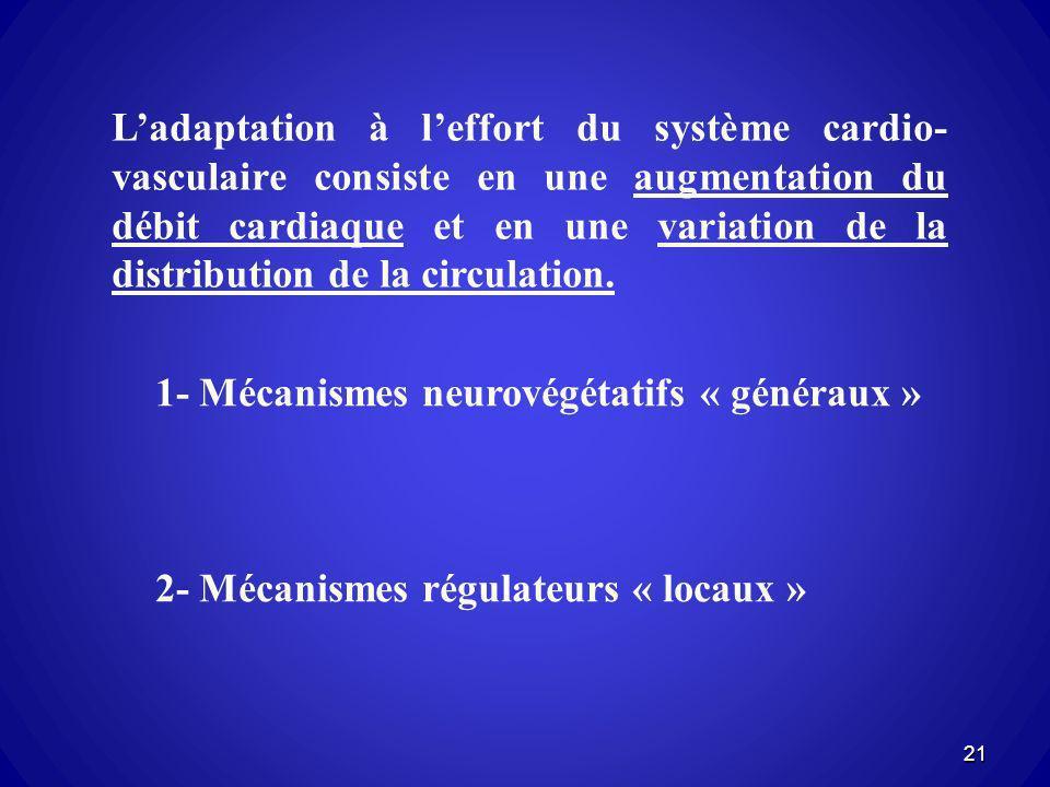 Ladaptation à leffort du système cardio- vasculaire consiste en une augmentation du débit cardiaque et en une variation de la distribution de la circu
