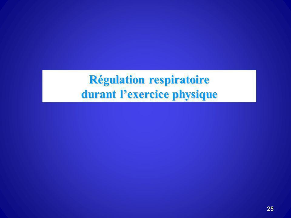 Régulation respiratoire durant lexercice physique 25