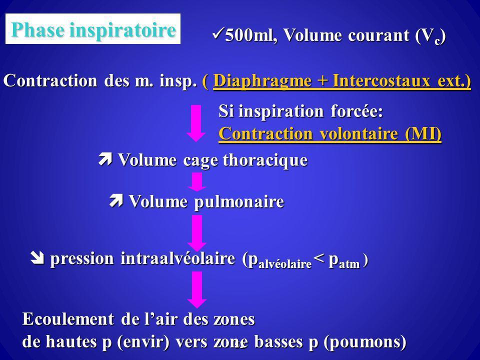 52 Phase inspiratoire Contraction des m. insp. ( Diaphragme + Intercostaux ext.) Diaphragme + Intercostaux ext.)Diaphragme + Intercostaux ext.) Volume