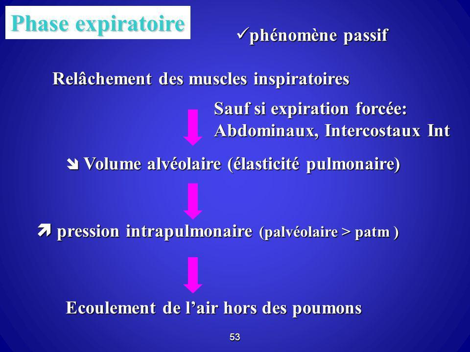 53 Phase expiratoire Relâchement des muscles inspiratoires Volume alvéolaire (élasticité pulmonaire) Volume alvéolaire (élasticité pulmonaire) pressio