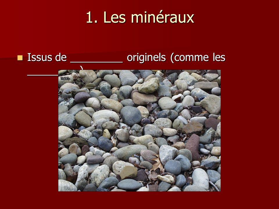 1. Les minéraux Issus de _________ originels (comme les _________) Issus de _________ originels (comme les _________)