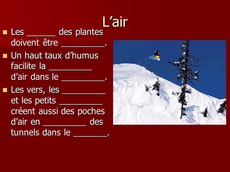Lair Les ______ des plantes doivent être _________. Les ______ des plantes doivent être _________. Un haut taux dhumus facilite la _________ dair dans