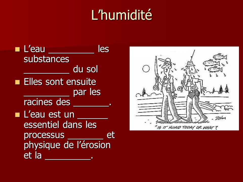 Lhumidité Leau _________ les substances _________ du sol Leau _________ les substances _________ du sol Elles sont ensuite _________ par les racines d