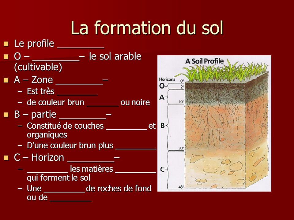 La formation du sol Le profile _________ Le profile _________ O – _________– le sol arable (cultivable) O – _________– le sol arable (cultivable) A –