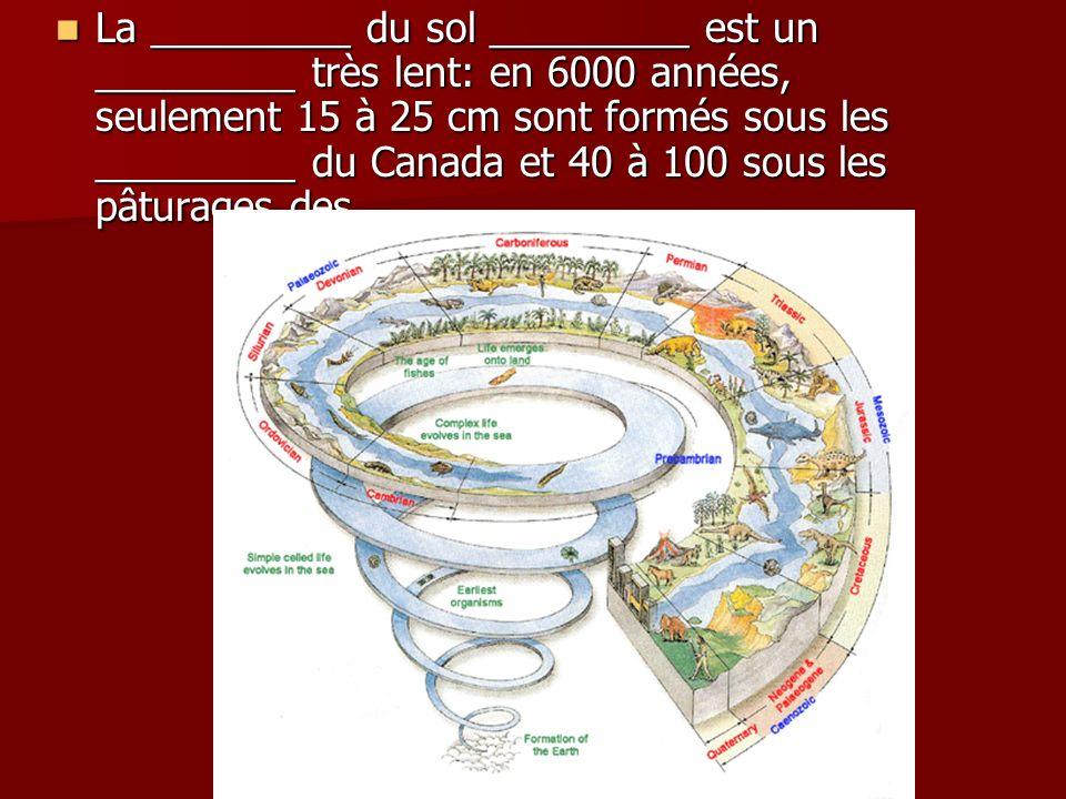 La _________ du sol _________ est un _________ très lent: en 6000 années, seulement 15 à 25 cm sont formés sous les _________ du Canada et 40 à 100 so