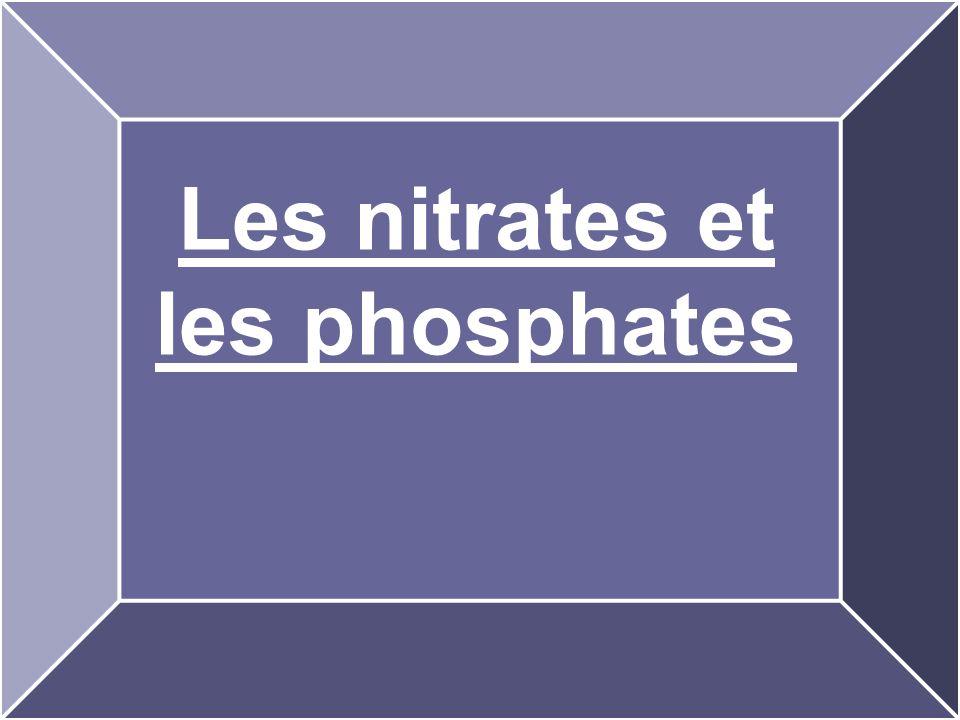Les nitrates et les phosphates