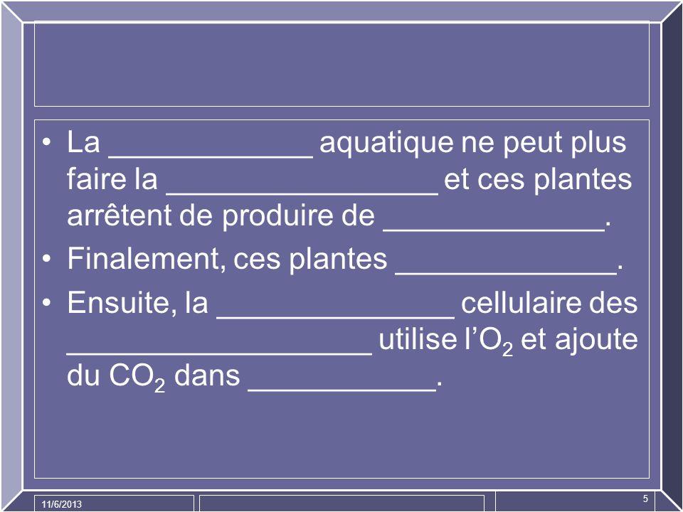 11/6/2013 5 La ____________ aquatique ne peut plus faire la ________________ et ces plantes arrêtent de produire de _____________. Finalement, ces pla