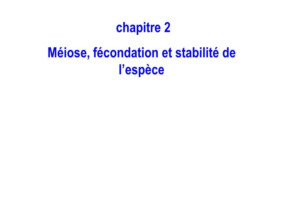 chapitre 2 Méiose, fécondation et stabilité de lespèce
