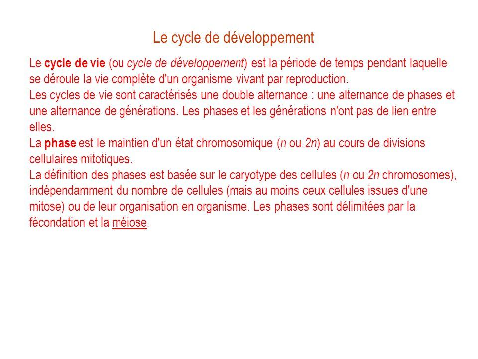 Le cycle de développement Le cycle de vie (ou cycle de développement ) est la période de temps pendant laquelle se déroule la vie complète d'un organi