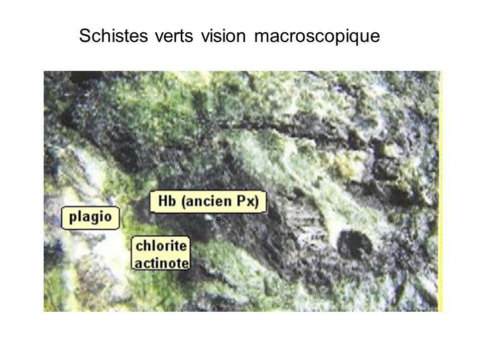 Schistes verts vision macroscopique