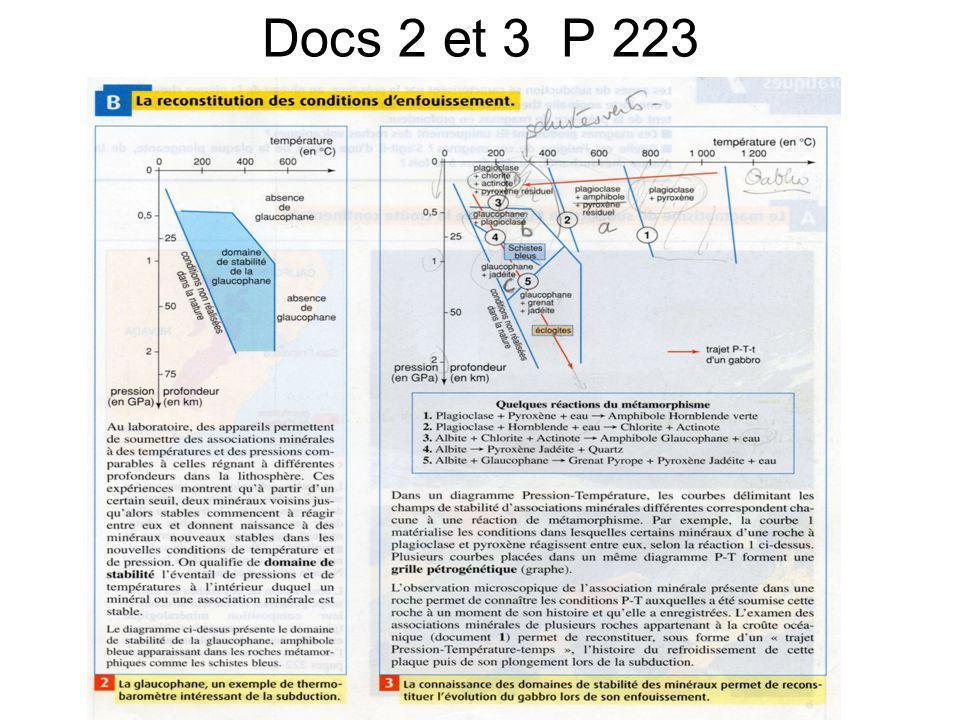 Docs 2 et 3 P 223