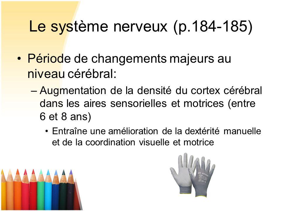 Le système nerveux (p.184-185) Période de changements majeurs au niveau cérébral: –Augmentation de la densité du cortex cérébral dans les aires sensor