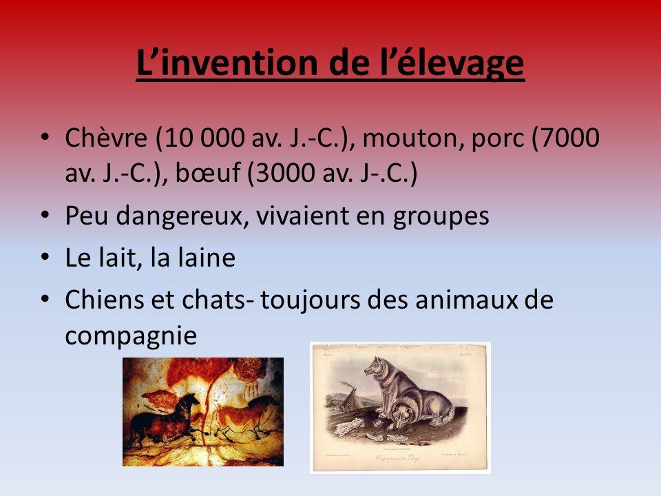 Linvention de lélevage Chèvre (10 000 av. J.-C.), mouton, porc (7000 av. J.-C.), bœuf (3000 av. J-.C.) Peu dangereux, vivaient en groupes Le lait, la