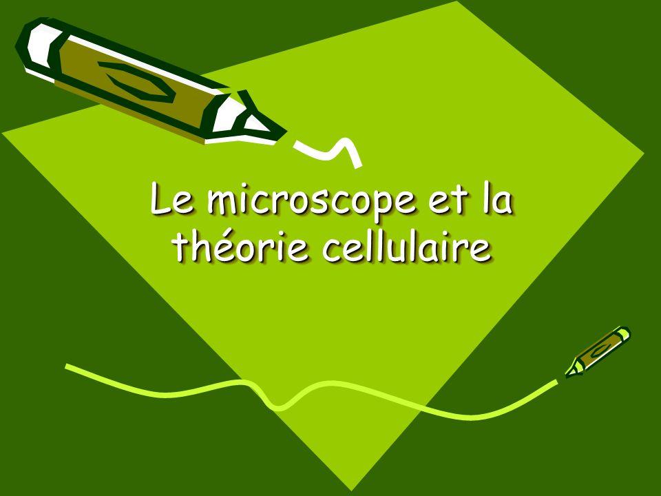 Progrès technologiques Les microscopes ont offert aux scientifiques le monde des cellules.
