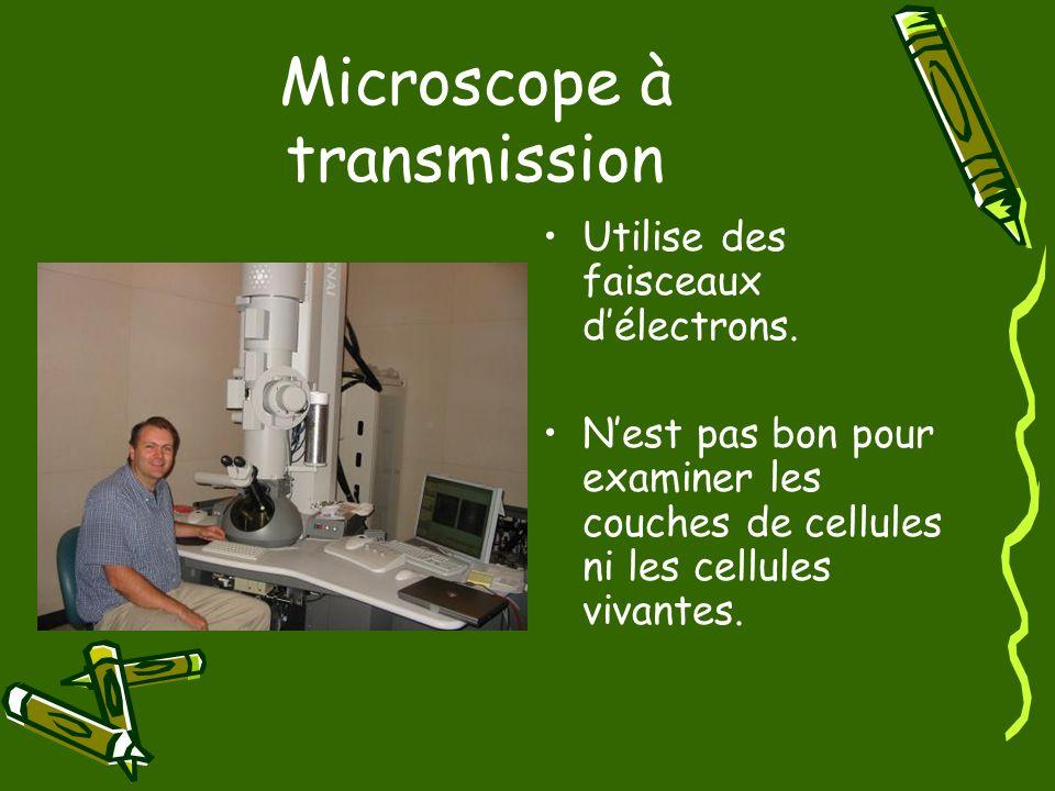 Microscope à transmission Utilise des faisceaux délectrons. Nest pas bon pour examiner les couches de cellules ni les cellules vivantes.