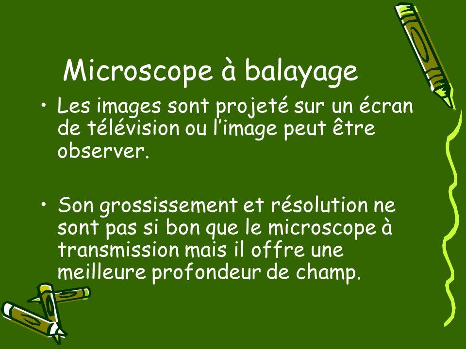 Microscope à balayage Les images sont projeté sur un écran de télévision ou limage peut être observer. Son grossissement et résolution ne sont pas si