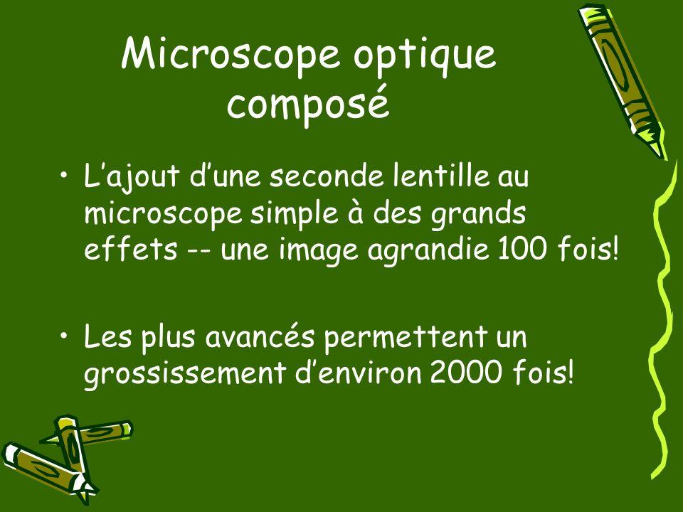 Microscope optique composé Lajout dune seconde lentille au microscope simple à des grands effets -- une image agrandie 100 fois! Les plus avancés perm