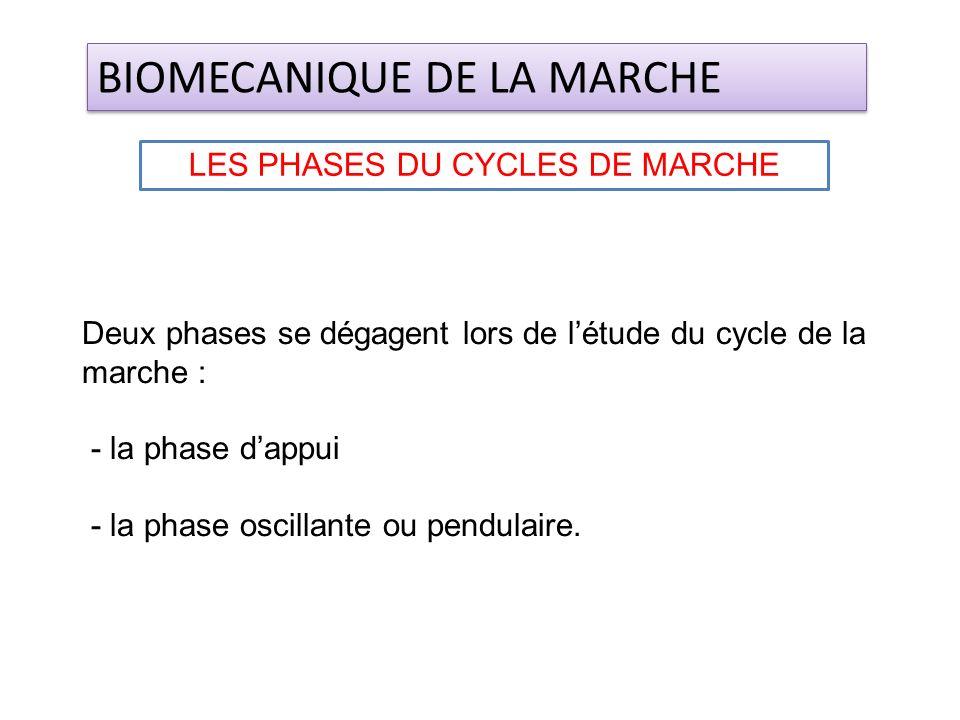 Deux phases se dégagent lors de létude du cycle de la marche : - la phase dappui - la phase oscillante ou pendulaire. BIOMECANIQUE DE LA MARCHE LES PH