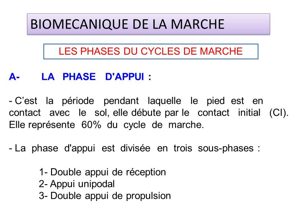 A- LA PHASE D'APPUI : - Cest la période pendant laquelle le pied est en contact avec le sol, elle débute par le contact initial (CI). Elle représente