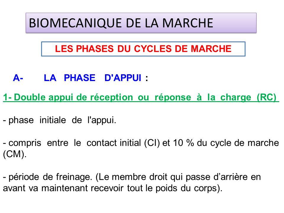 1- Double appui de réception ou réponse à la charge (RC) - phase initiale de l'appui. - compris entre le contact initial (CI) et 10 % du cycle de marc