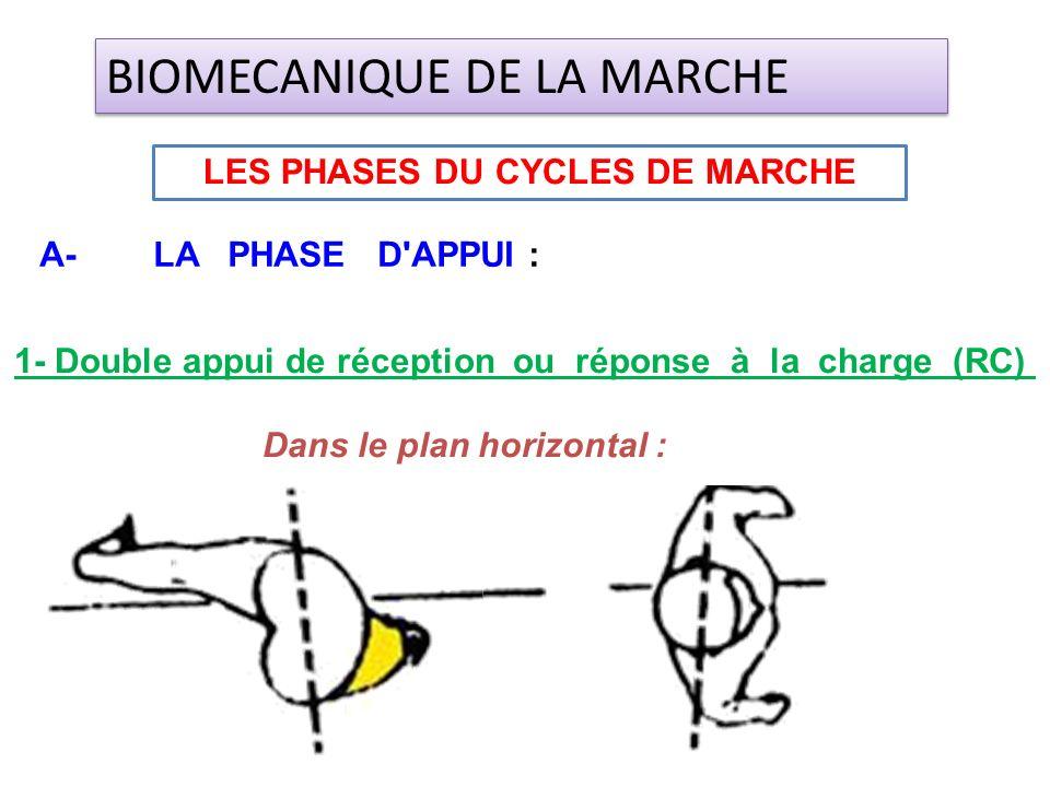 1- Double appui de réception ou réponse à la charge (RC) Dans le plan horizontal : LES PHASES DU CYCLES DE MARCHE BIOMECANIQUE DE LA MARCHE A- LA PHAS