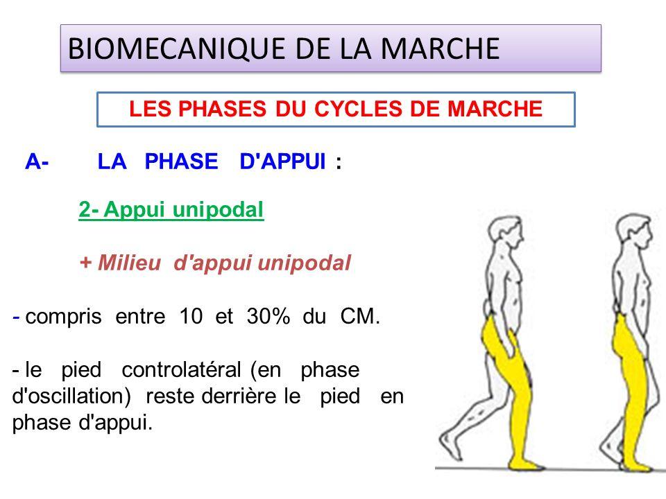 2- Appui unipodal + Milieu d'appui unipodal - compris entre 10 et 30% du CM. - le pied controlatéral (en phase d'oscillation) reste derrière le pied e
