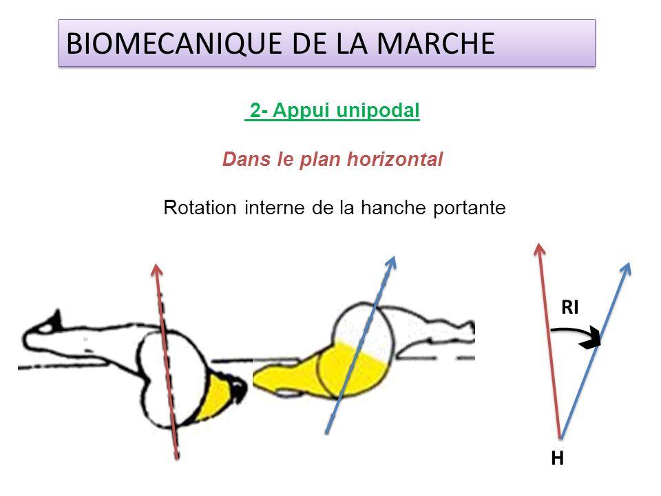 2- Appui unipodal Dans le plan horizontal Rotation interne de la hanche portante BIOMECANIQUE DE LA MARCHE H RI