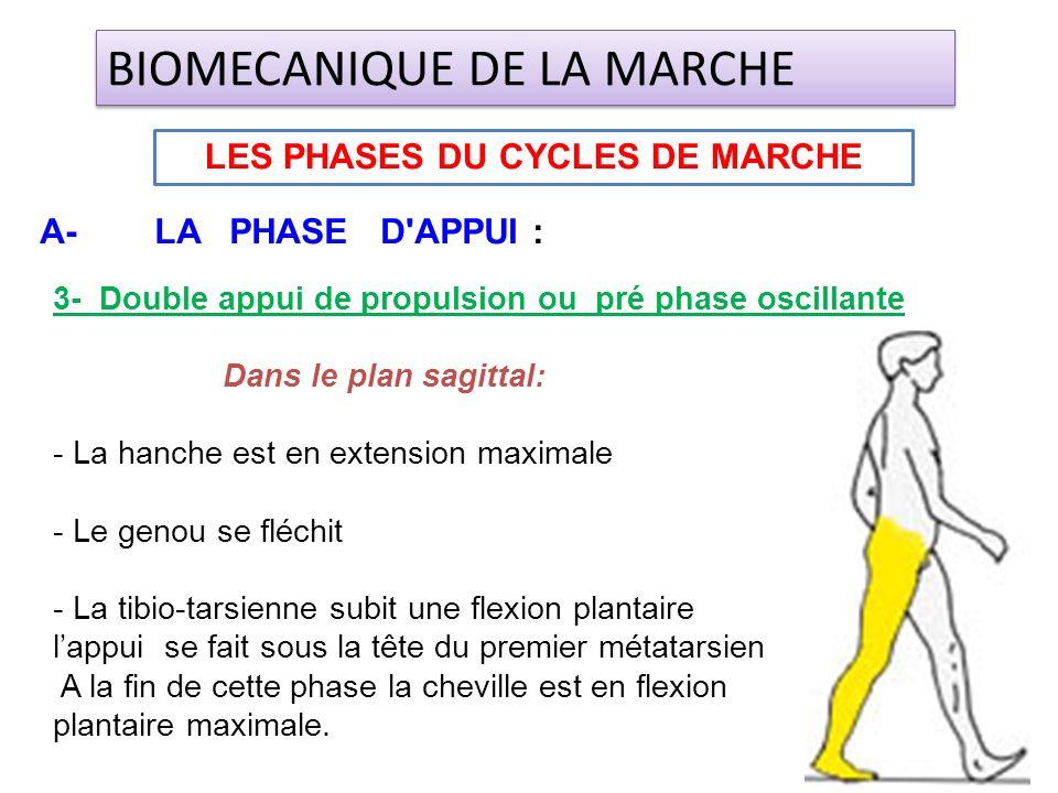 3- Double appui de propulsion ou pré phase oscillante Dans le plan sagittal: - La hanche est en extension maximale - Le genou se fléchit - La tibio-ta