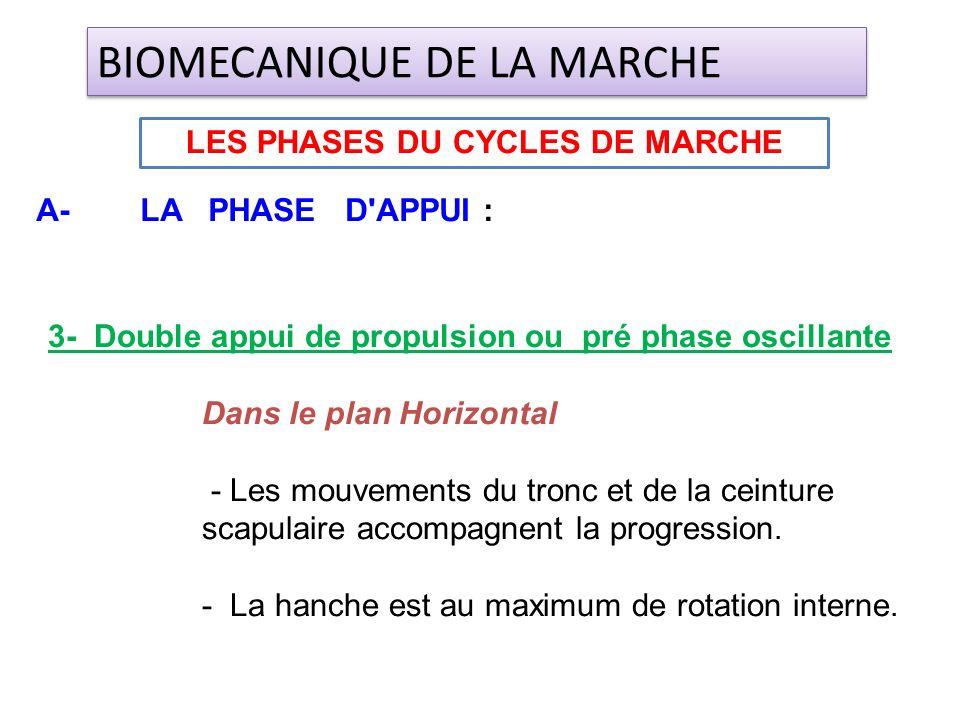3- Double appui de propulsion ou pré phase oscillante Dans le plan Horizontal - Les mouvements du tronc et de la ceinture scapulaire accompagnent la p