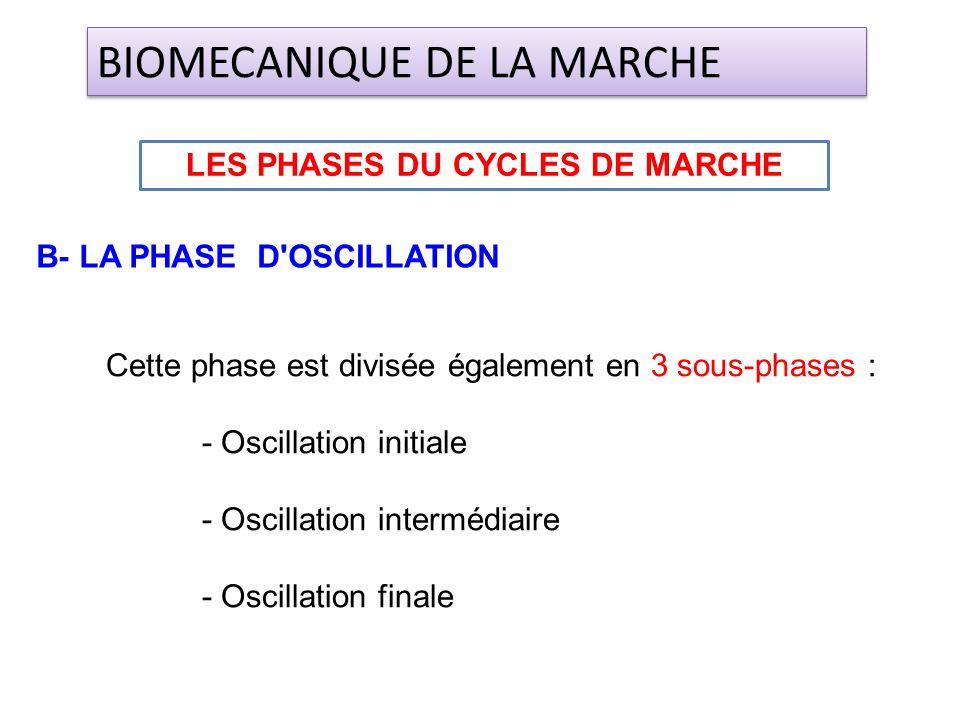 Cette phase est divisée également en 3 sous-phases : - Oscillation initiale - Oscillation intermédiaire - Oscillation finale B- LA PHASE D'OSCILLATION